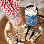 S'mores Biscotti & the Food Blogger Cookie Swap 2015