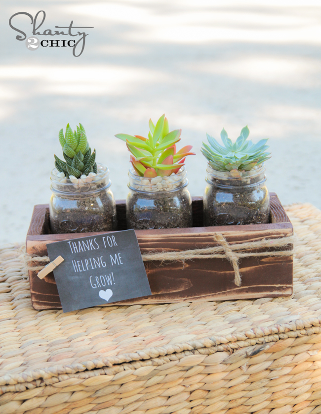 Teacher Gifts - DIY Succulent Jars